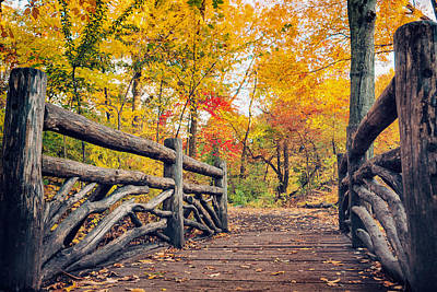 Autumn Bridge - Central Park - New York City Art Print