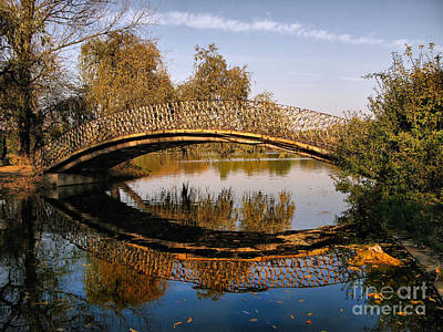 Photograph - Autumn Bridge In Romania by Daliana Pacuraru