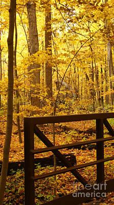 Autumn Bridge Iv Art Print by Valerie Fuqua