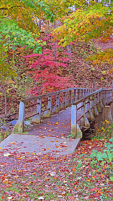 Photograph - Autumn Bridge by Kay Novy