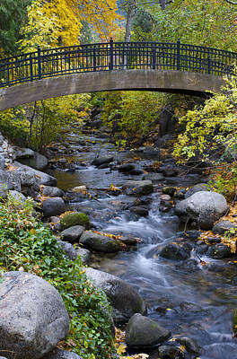 Photograph - Autumn Bridge by Loree Johnson
