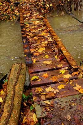 Photograph - Autumn Bridge by Mary Frances