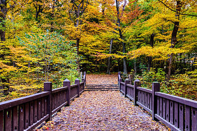 Photograph - Autumn Bridge by Randy Scherkenbach