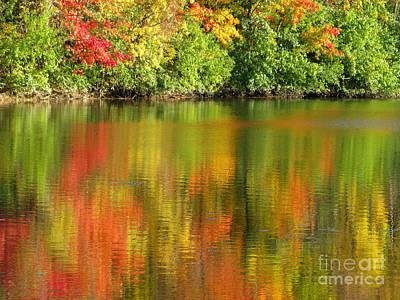 Autumn Brilliance Art Print by Ann Horn