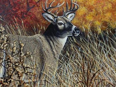 Painting - Autumn Buck by Kimberly Blaylock