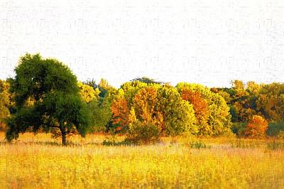 Photograph - Autumn Canvas by Bonfire Photography