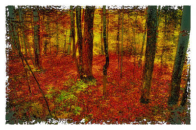 Corporate Art Photograph - Autumn Carpet by David Patterson