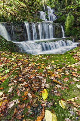 Photograph - Autumn Cascade by Ian Mitchell