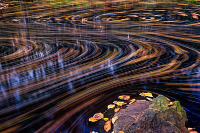 Autumn Leaf On Water Photograph - Autumn Chaos by Jeff Sinon