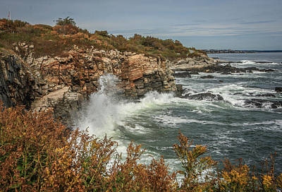 Photograph - Autumn Coast by Jane Luxton