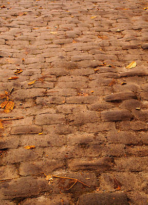 Photograph - Autumn Cobble Stone Road II by Tikvah's Hope