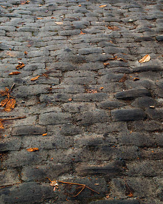 Photograph - Autumn Cobble Stone Road by Tikvah's Hope