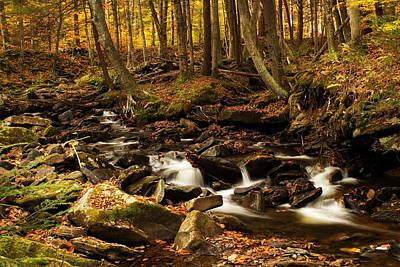 Autumn Color And Creek Art Print by Amanda Kiplinger