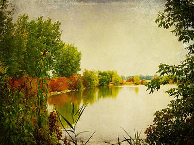Photograph - Autumn Color By The Bay by Shawna Rowe