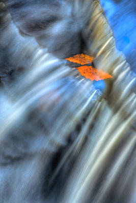 Photograph - Autumn Color Caught In Time by John Magyar Photography