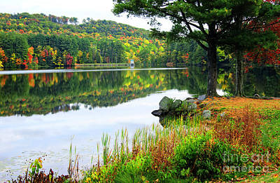 Photograph - Autumn Color In New England by David Birchall