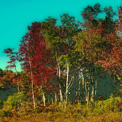 Nature Abstract Digital Art - Autumn Color In The Adirondack Mountains by David Patterson