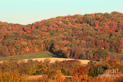 Photograph - Autumn Color On Rolling Hills by Adam Long