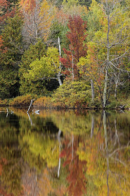 Northwoods Photograph - Autumn Color Reflected On Andrus Lake by Adam Jones