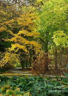 Photograph - Autumn Colors 20 by Rudi Prott