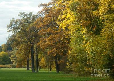 Photograph - Autumn Colors 24 by Rudi Prott