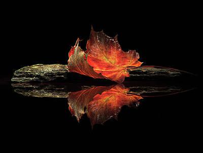 Zen Rocks Photograph - Autumn Colors by Aida Ianeva