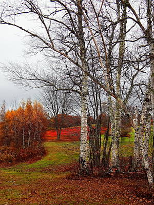 Photograph - Autumn Colors And A Red Field  by Expressionistart studio Priscilla Batzell