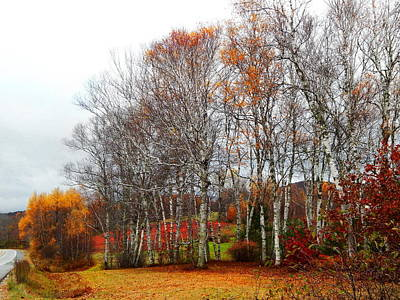 Photograph - Autumn Colors And A Red Field Too by Expressionistart studio Priscilla Batzell