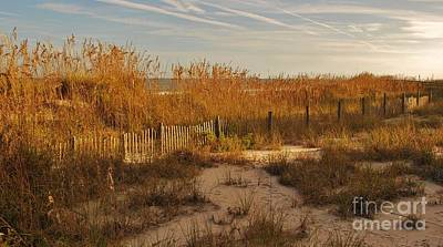 Photograph - Autumn Colors At The Beach 2 by Bob Sample