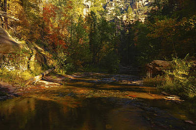 Autumn Colors By The Creek  Art Print by Saija  Lehtonen