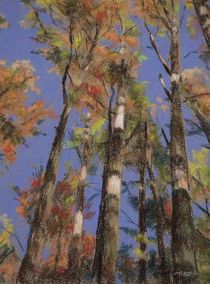 Autumn Woods Pastel - Autumn Colors by Christopher Reid