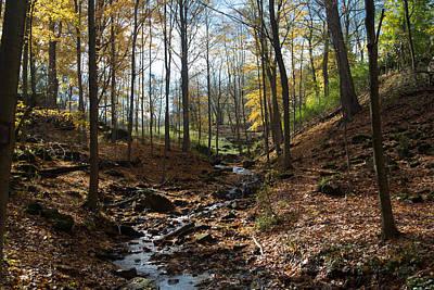 Photograph - Autumn Colors by Kim Aston