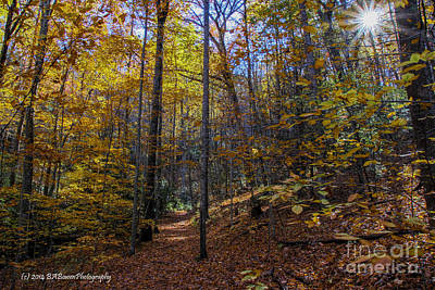 Photograph - Autumn Colors On Blood Mountain by Barbara Bowen