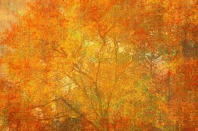 Autumn Colors Art Print by Suzanne Powers