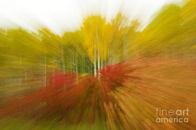 Autumn Colors Art Print by Vivian Christopher