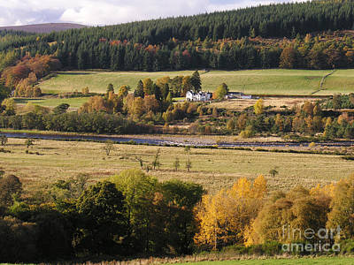 Photograph - Autumn Colour On Speyside  by Phil Banks