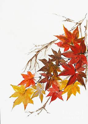 Autumn Colour Art Print by Sibby S