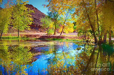 Photograph - Autumn Colours In Moab by Tara Turner