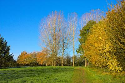 Photograph - Autumn Colours by Jeremy Hayden