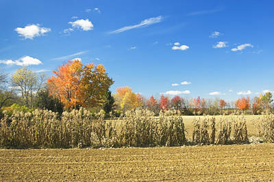 Photograph - Autumn Corn Field After Harvest In Maine Photo by Keith Webber Jr