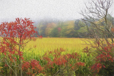 Autumn Cornfield II Art Print by Tom Singleton