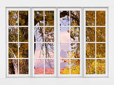 James Insogna Photograph - Autumn Cottonwood Tree Longs Peak White Window View by James BO  Insogna