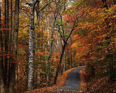 Photograph - Autumn Country Backroad by TnBackroadsPhotos