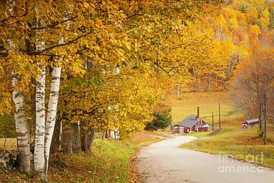Photograph - Autumn Country Lane by Brian Jannsen