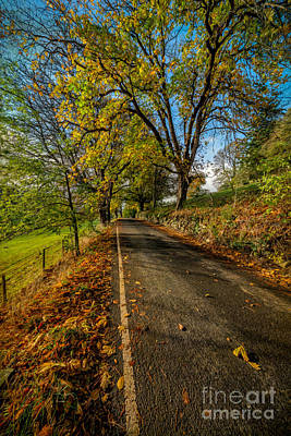 Winter Roads Photograph - Autumn Country Road by Adrian Evans