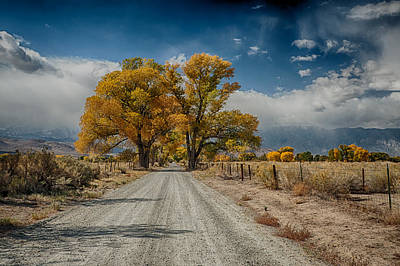 Dirt Roads Photograph - Autumn Country Road by Cat Connor