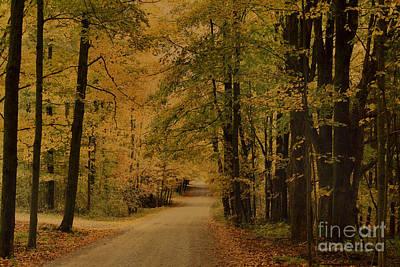 Fallen Leaf Photograph - Autumn Country Road by Deborah Benoit