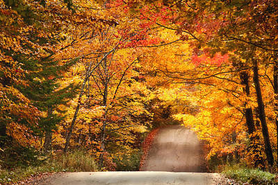 Photograph - Autumn Country Road by Wade Crutchfield