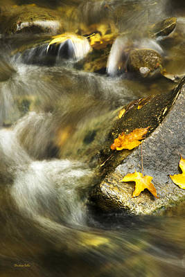 Photograph - Autumn Creek by Christina Rollo