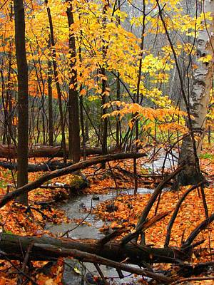 Art Print featuring the photograph Autumn Creek In The Rain by Rodney Lee Williams